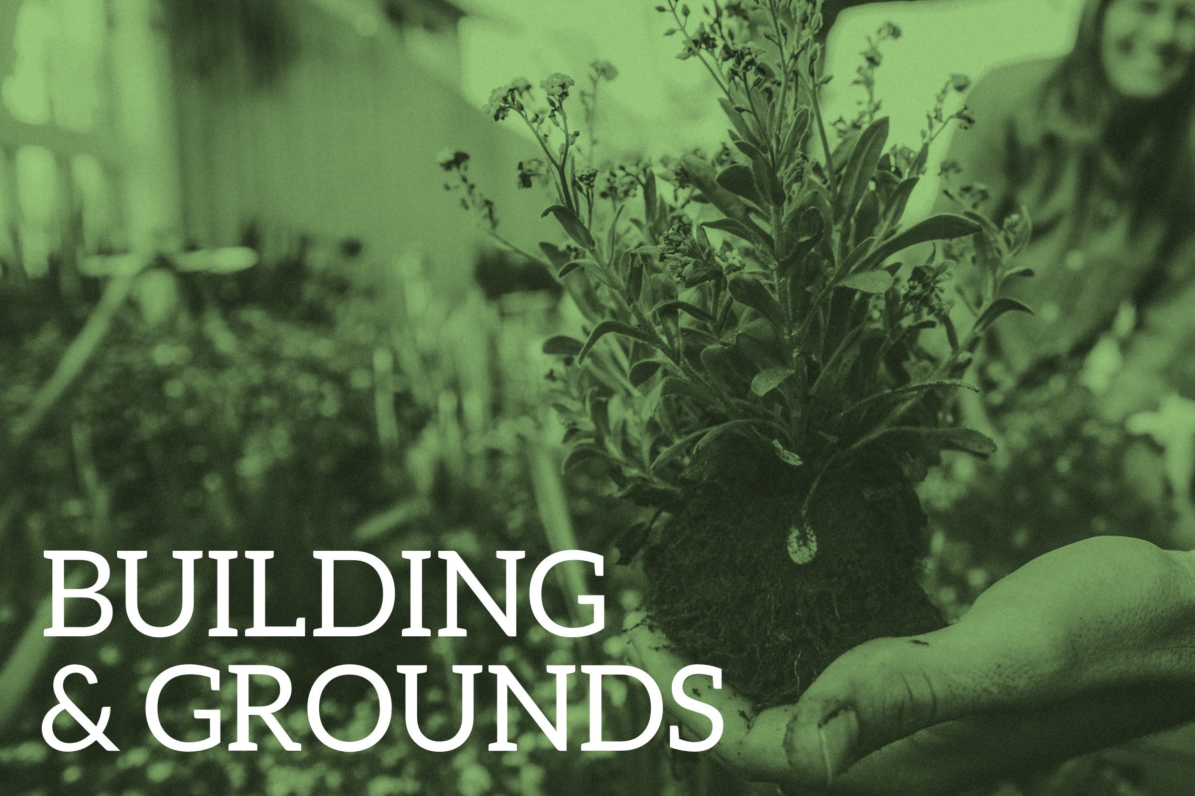 Building and Grounds Web_small.jpg