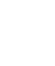 wok and bao.png