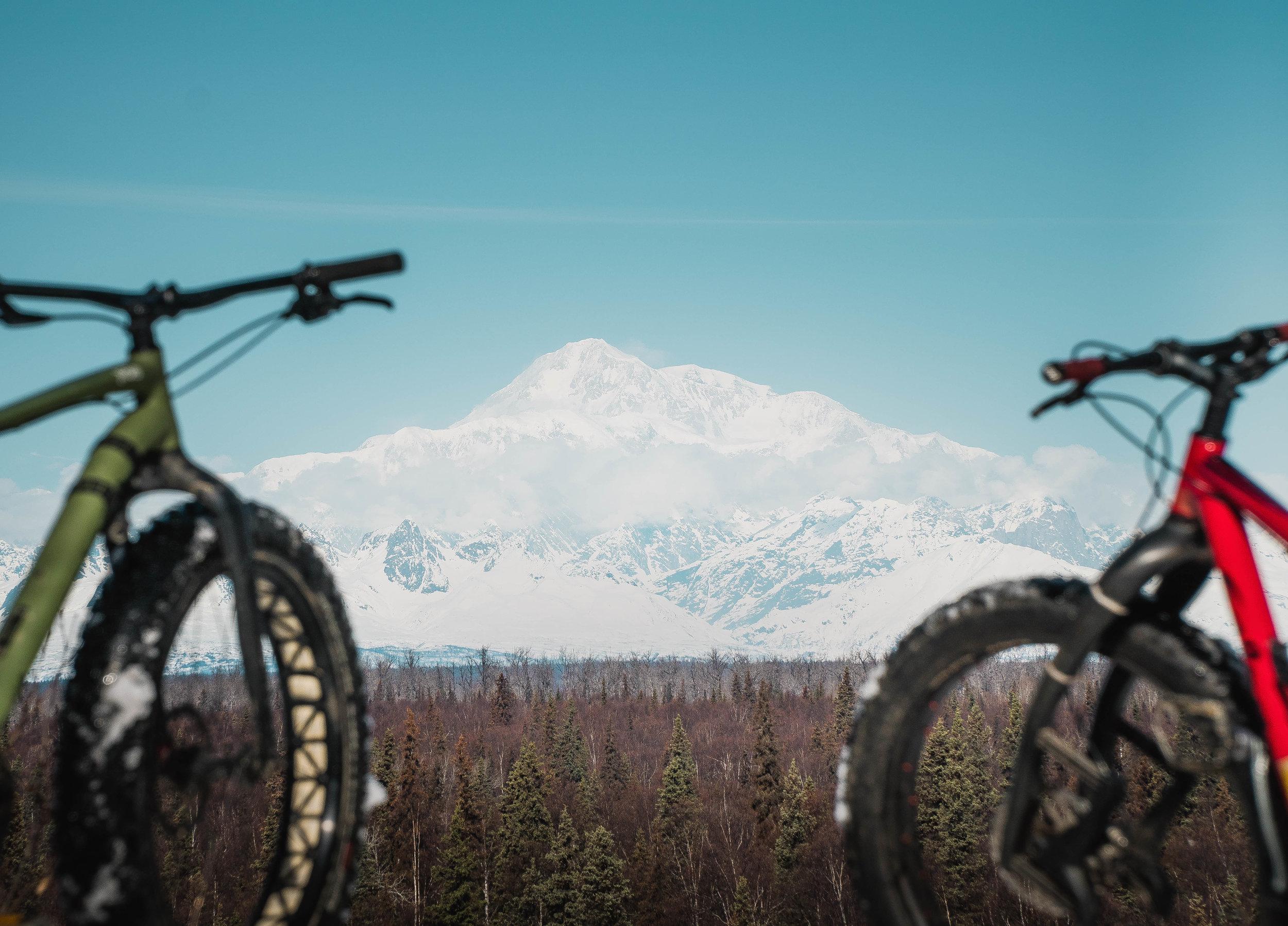 - bicycle rentals