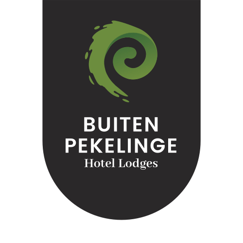 Logo Buiten Pekelinge - websitebouw en online marketing.jpg