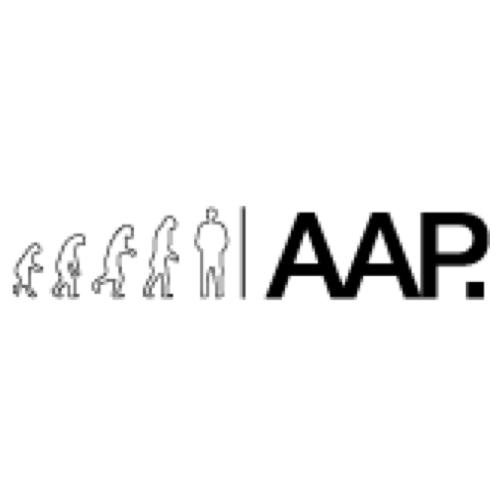 Logo Bureau AAP - websitebouw en online marketing.jpg