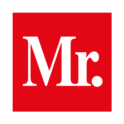 Logo MR. Online - websitebouw en online marketing.jpg