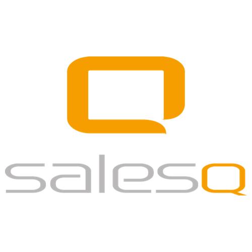 Logo SalesQ - websitebouw en online marketing.jpg