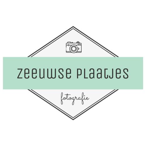Logo Zeeuwse plaatjes - websitebouw en online marketing.jpg