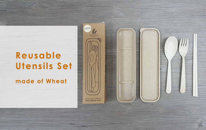 Reusable Utensils Set.jpg