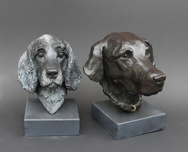 Labrador and Spaniel Head.jpg