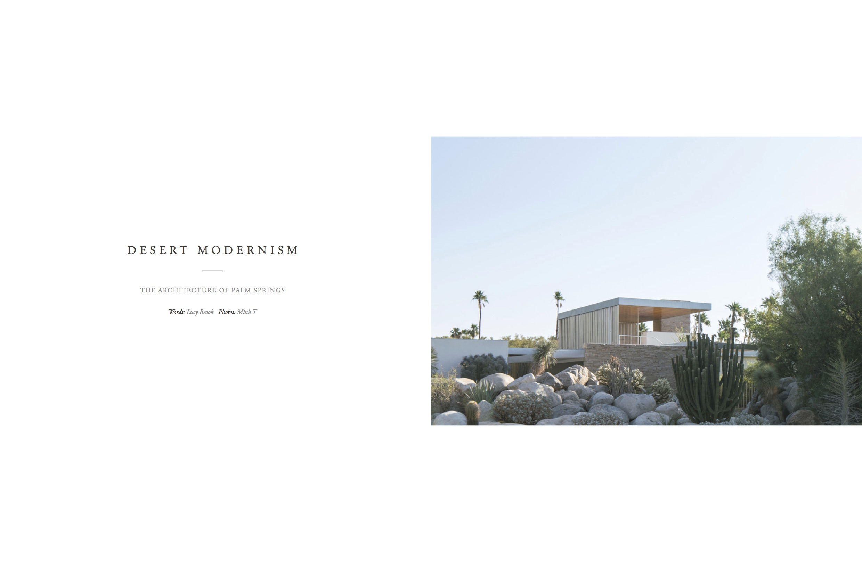 Volume 12 - desert modernism.jpg