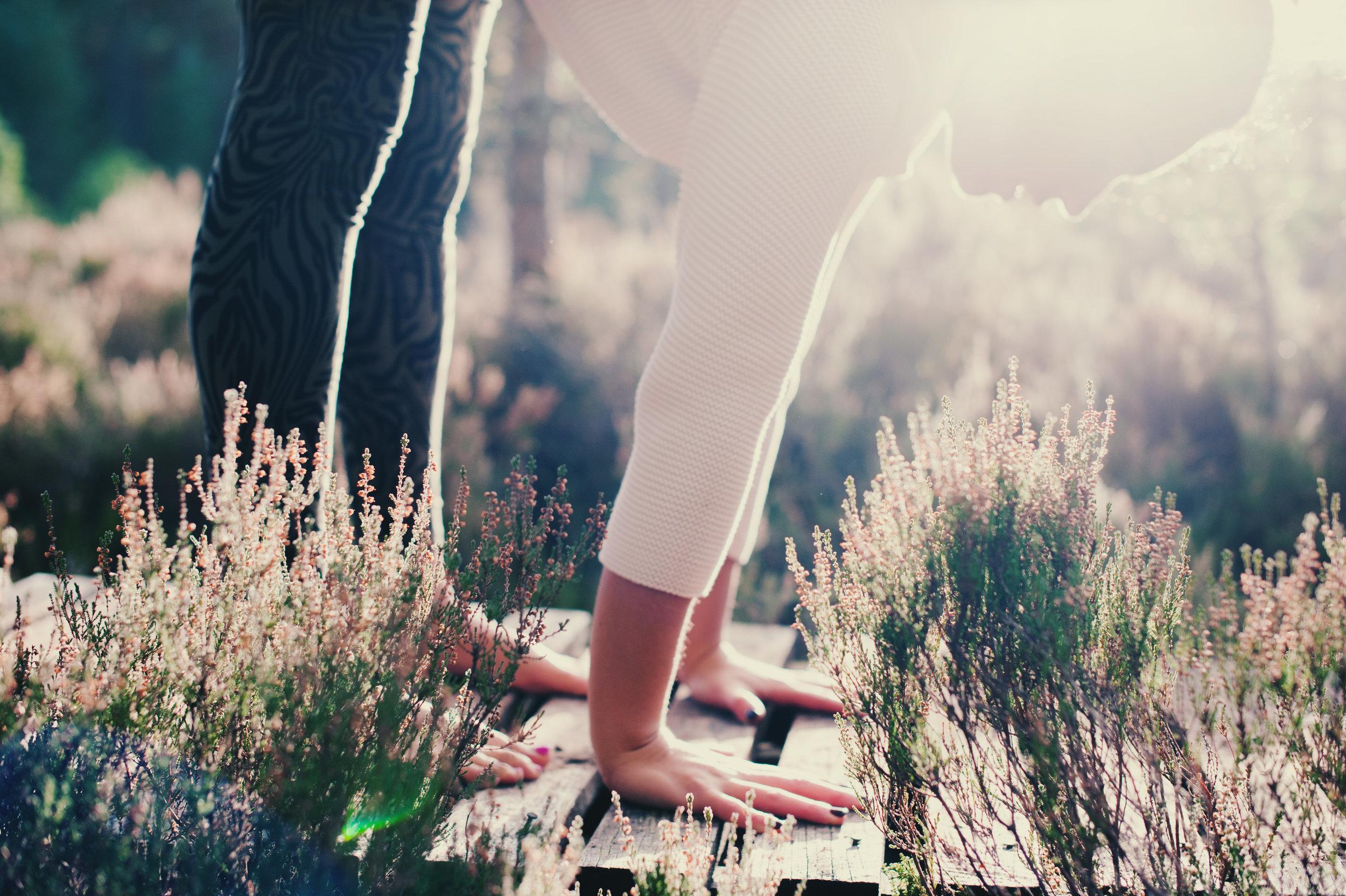 yoga-picture-scottish-highlands-hände-sonnenlicht.jpg