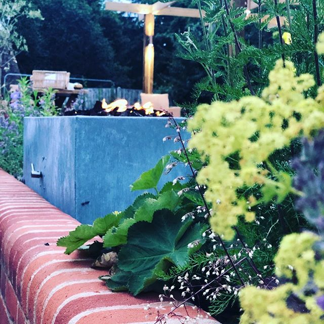 💚🌷🌿Summer days like these . . . head to a pub garden that feels like home, or better than home! Fire • water • shade • comfort • plants • herbs!! Gently lit to take you into the warm evenings . . . loving this part of the project just as much!! 🌿🌷💚 #royaloak #gardeninspo #pubgarden #englishcountrygarden #firepit #alfresco #fire #waterfountain #sunshade #pergola #herbgarden #gardenlighting