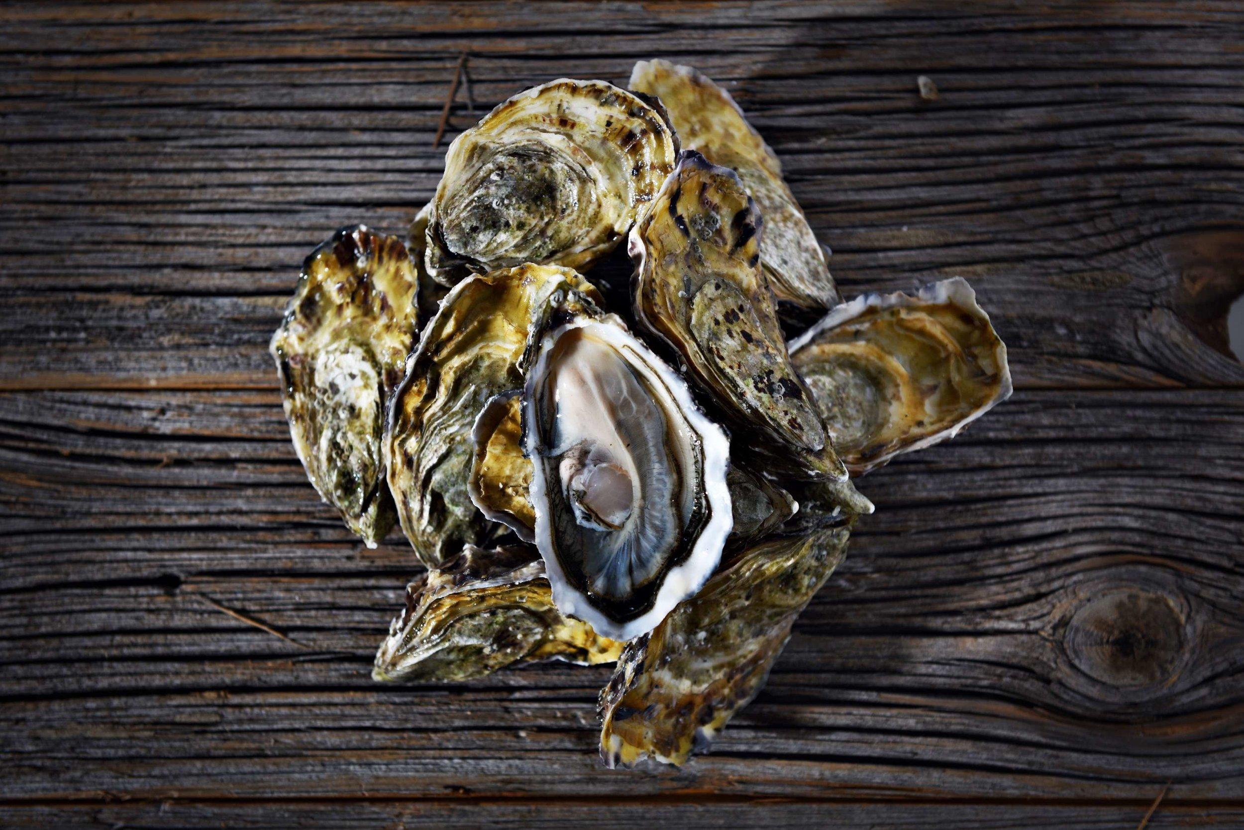 11 dome sur mer seafood schaal schelp kreeft restaurant bistro antwerpen frederic chabbert michelinstar bart albrecht tablefever.jpg