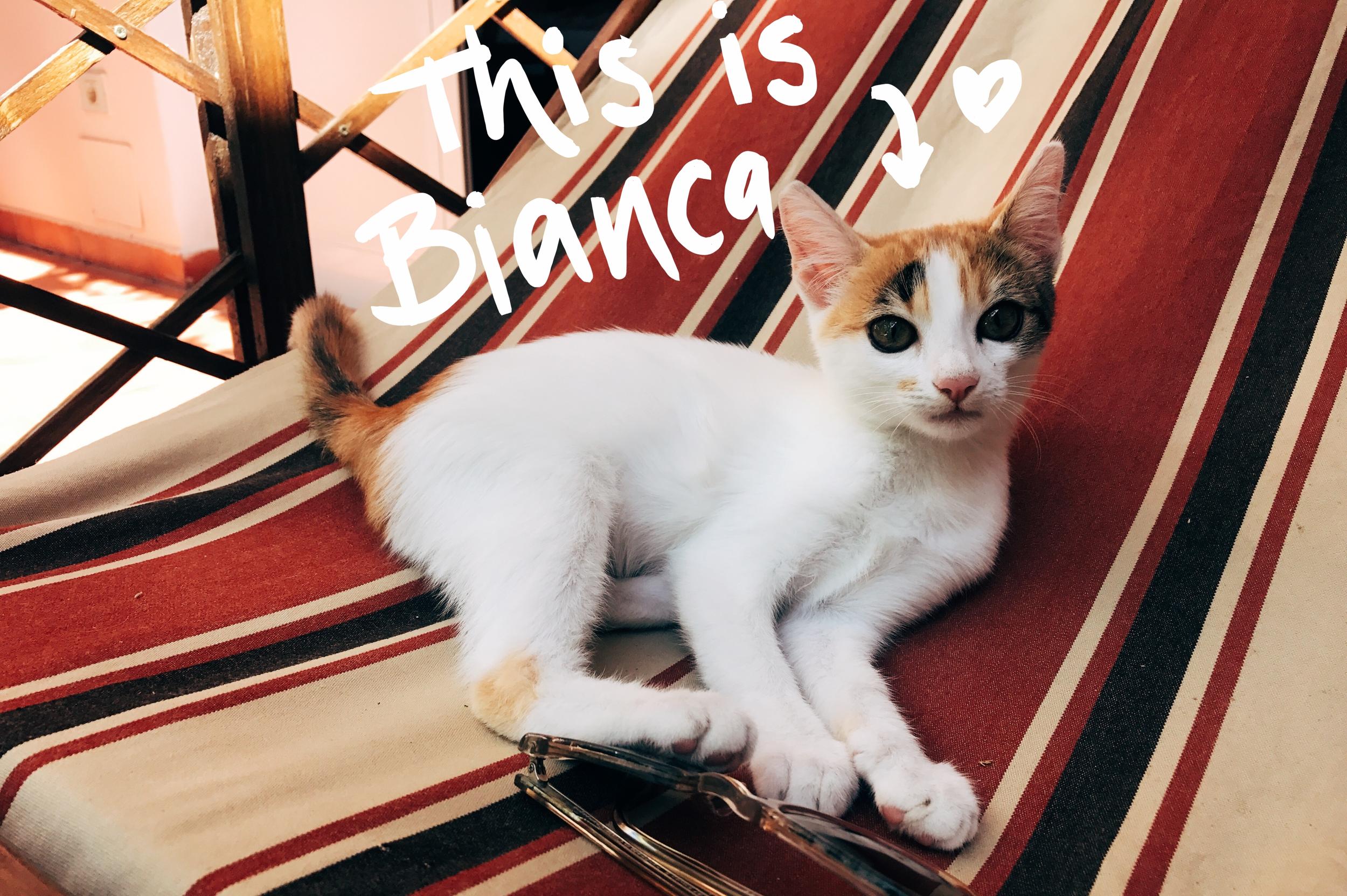 Bianca.png