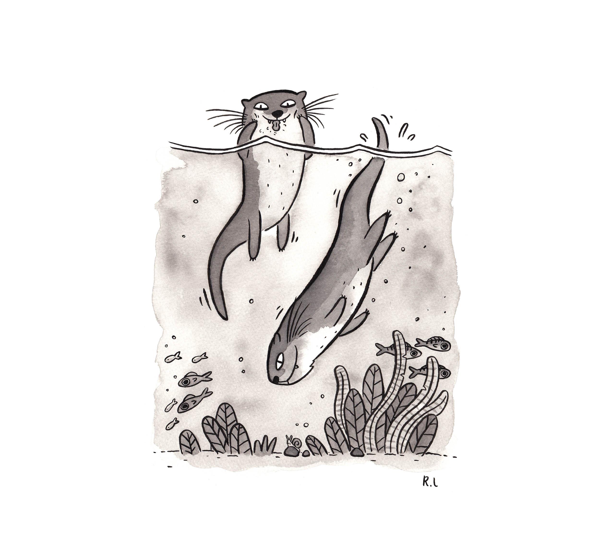 otters ink inktober rachel logan illustration.jpg