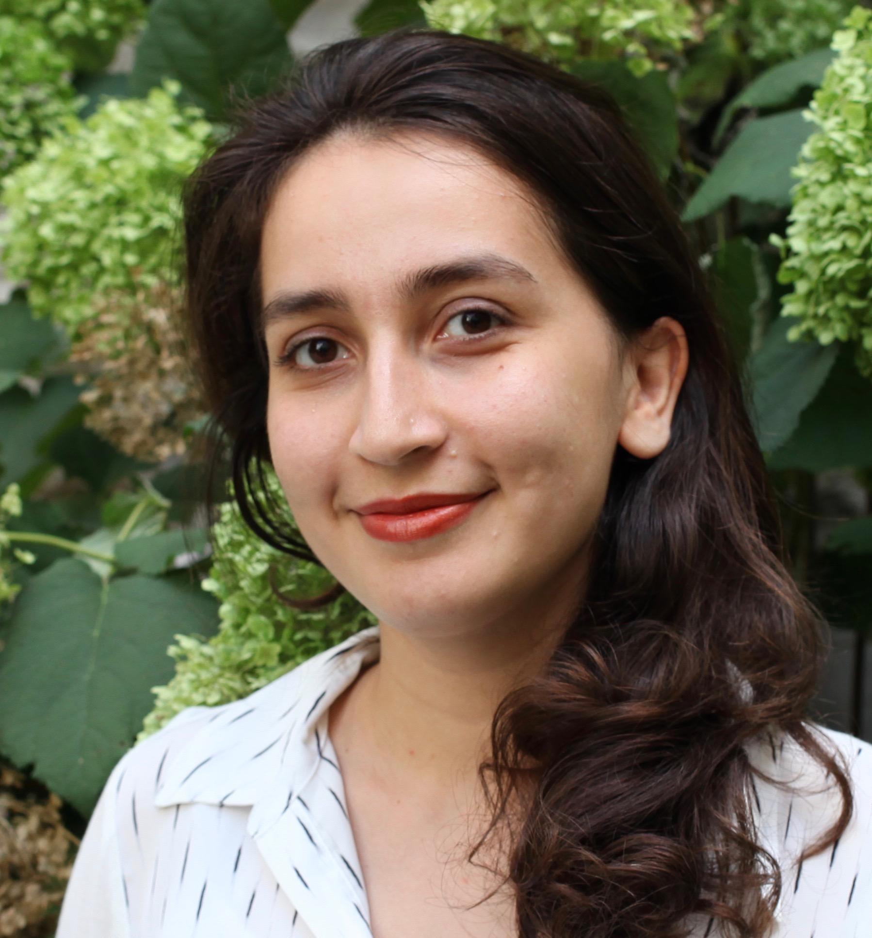 Razieh KarimiHaghighi