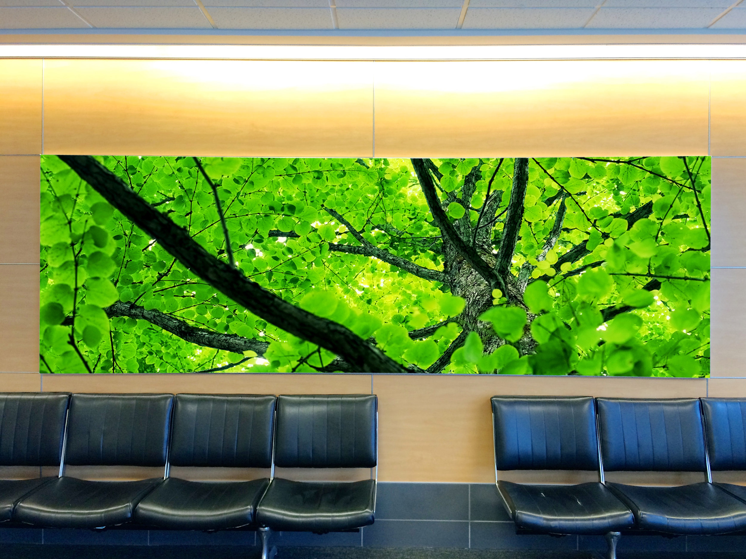 B Concourse Tension Fabric Display at Gate B1.jpg