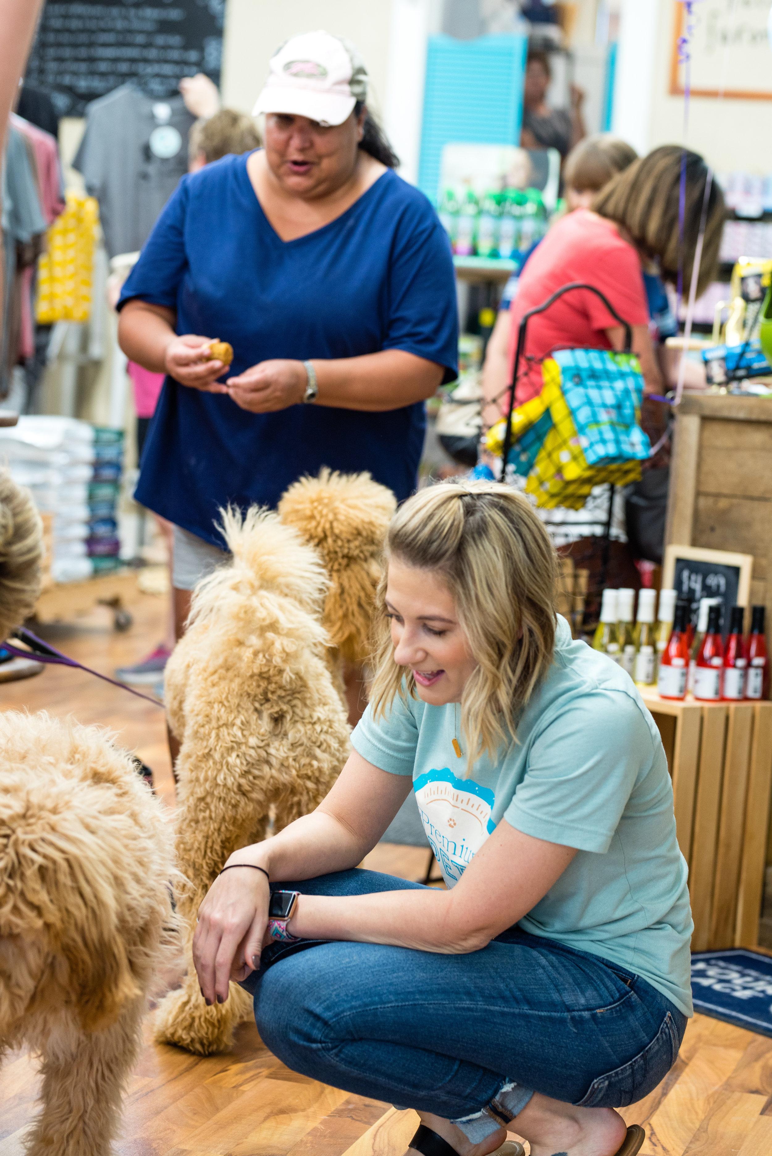 Brittany - Premium Pets-42.jpg