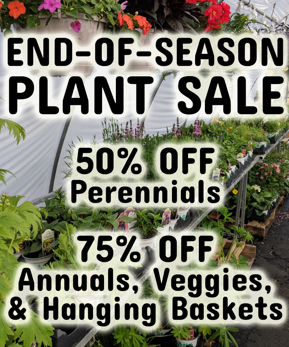GREENHOUSE SALE FACEBOOK POST copy.jpg