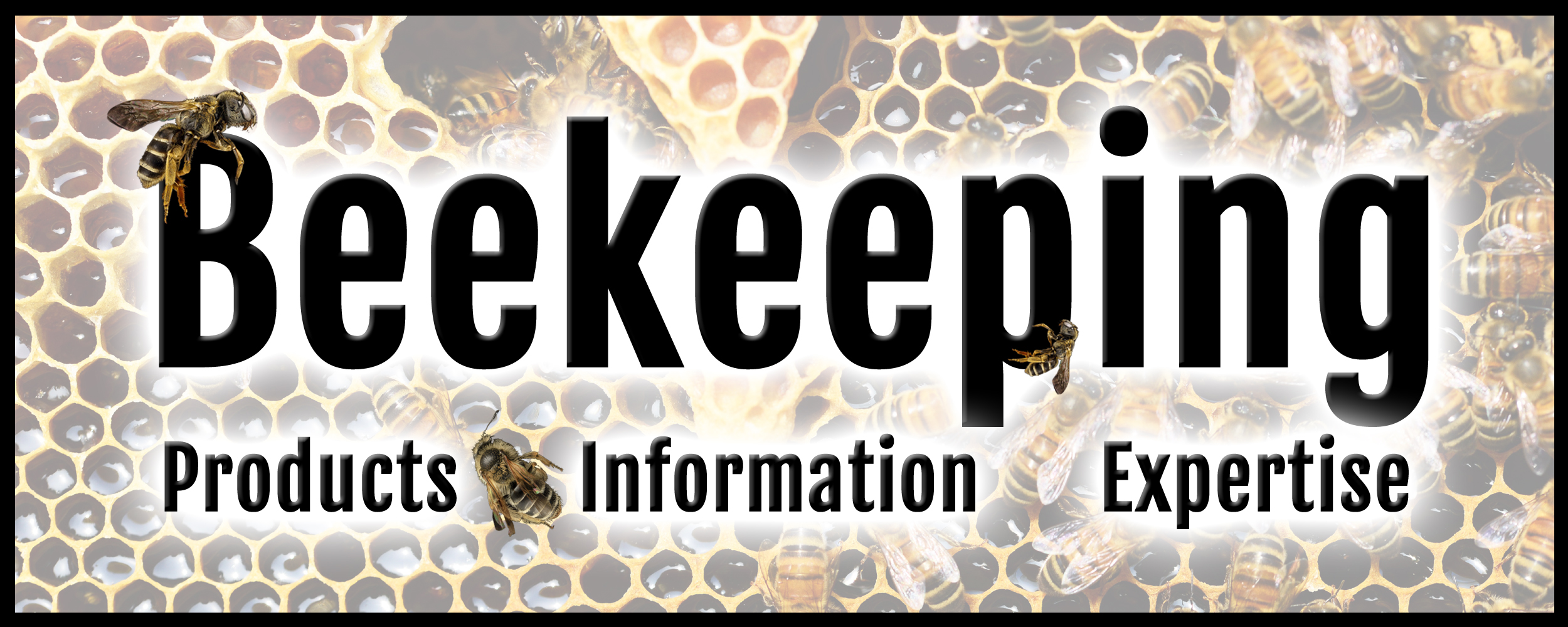 beekeeping banner v2.jpg