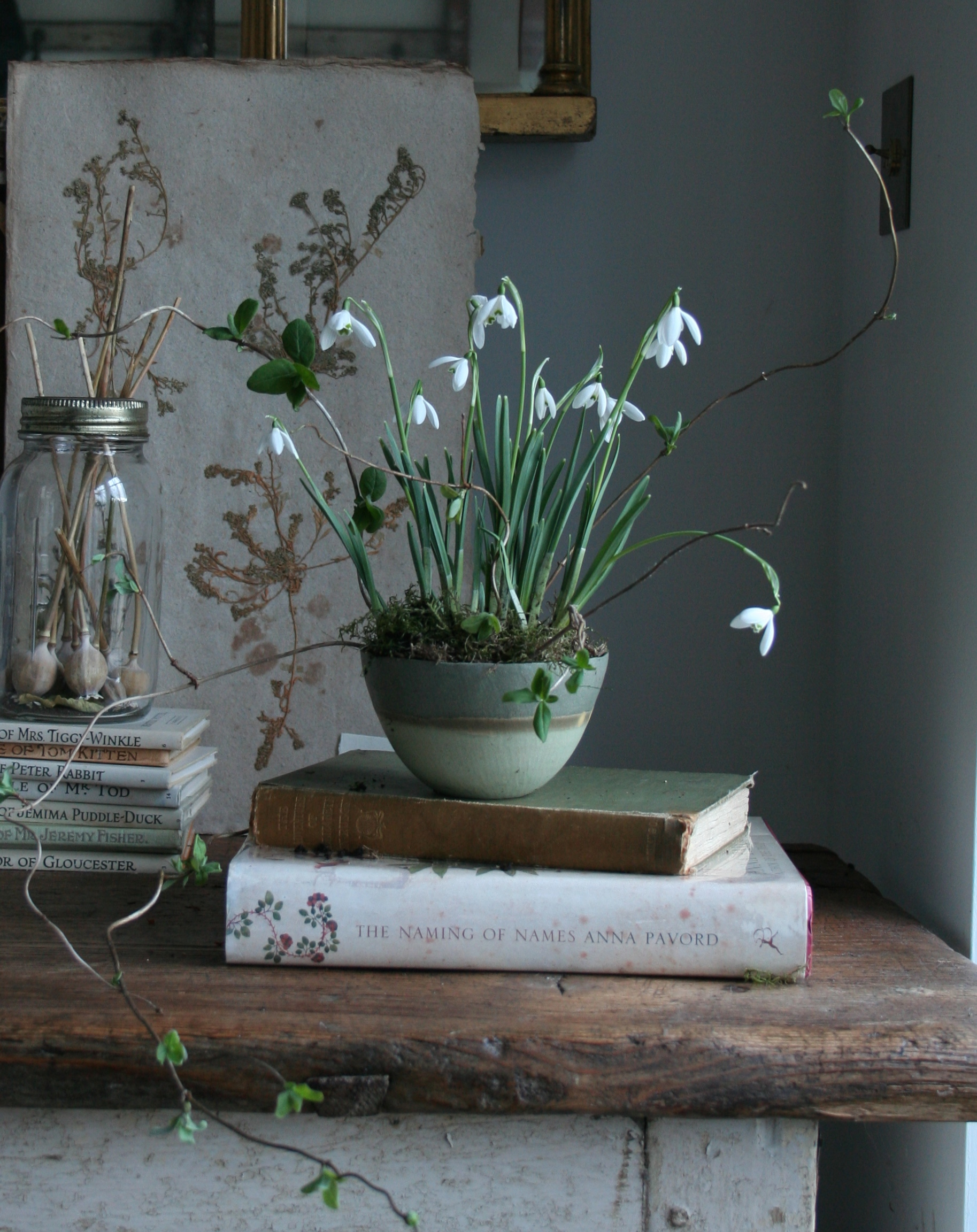 Snowdrops. Photo by Lucy