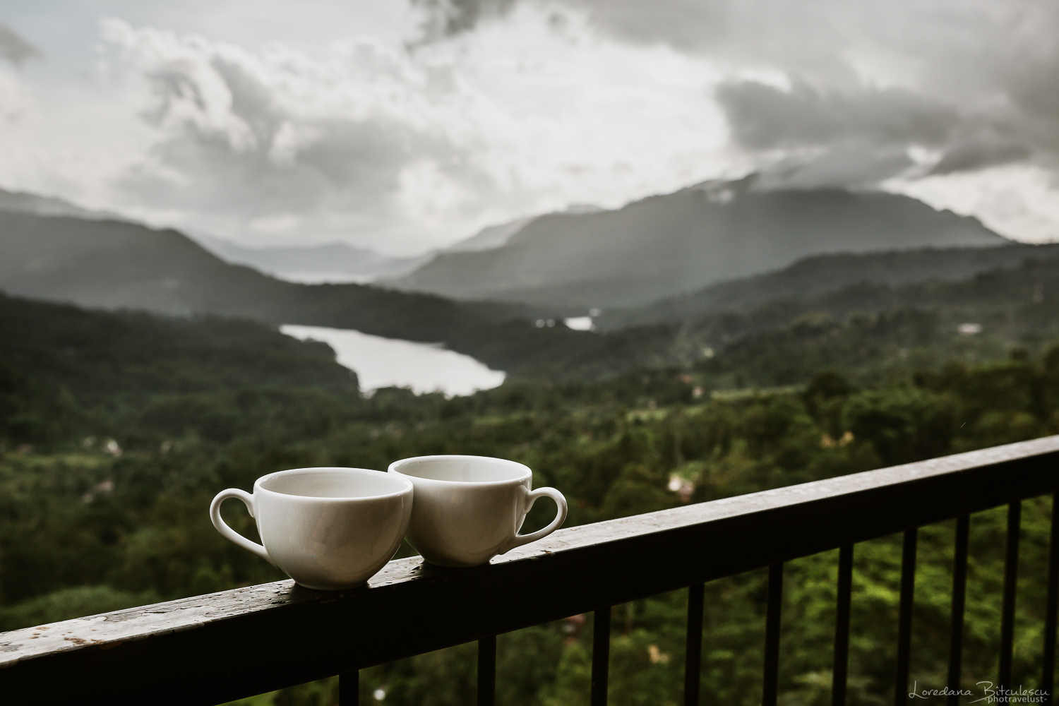 The view over the valley from the Tea Bush Factory, Nuwara Eliya