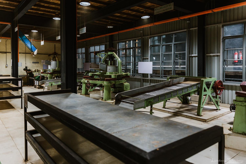 Interior from the Tea Bush Factory, Nuwara Eliya