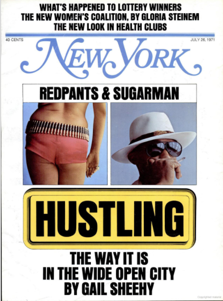 nymag - Sheehy cover.png