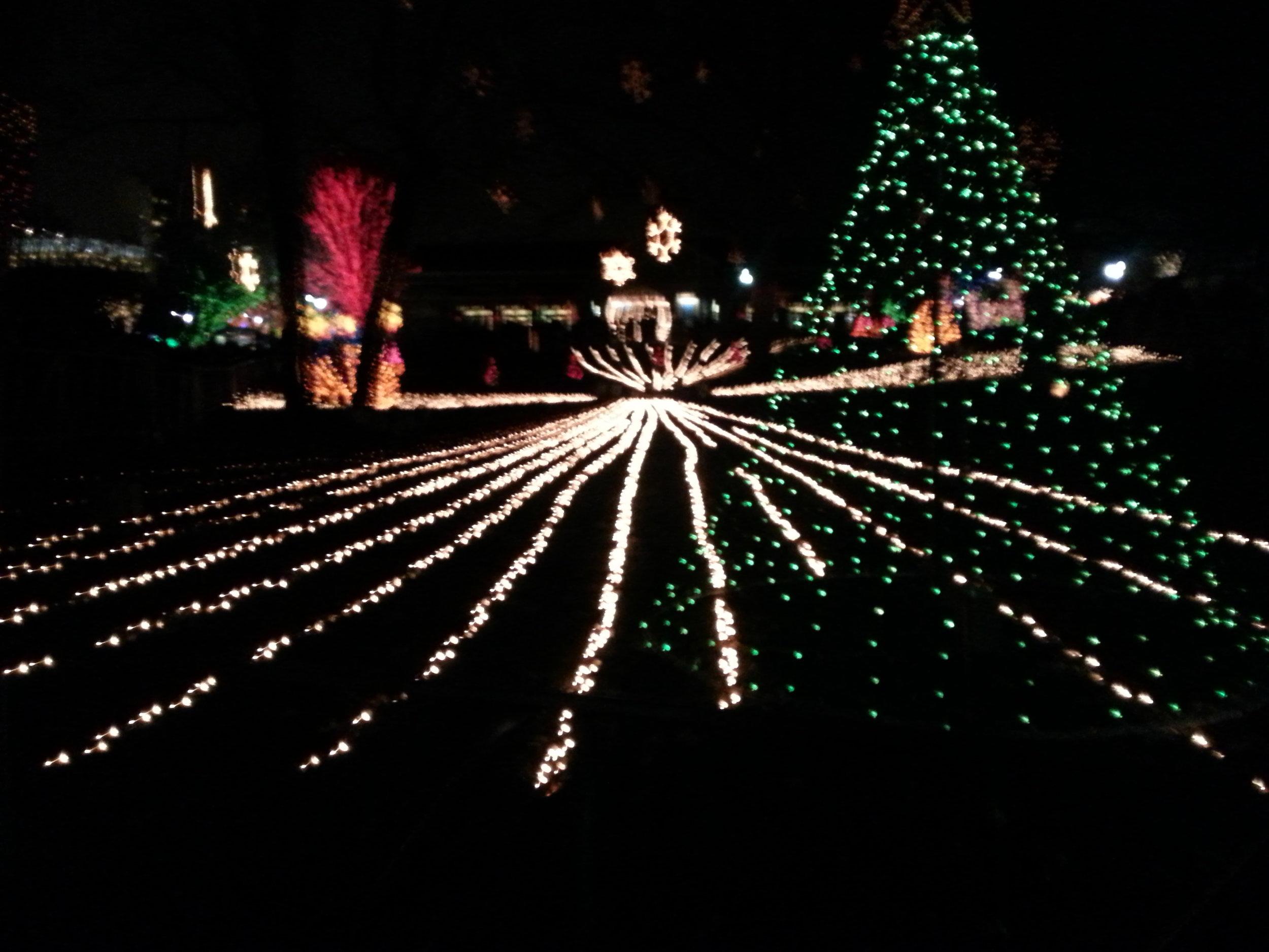 LED Christmas Tree & Professional Holiday Lighting