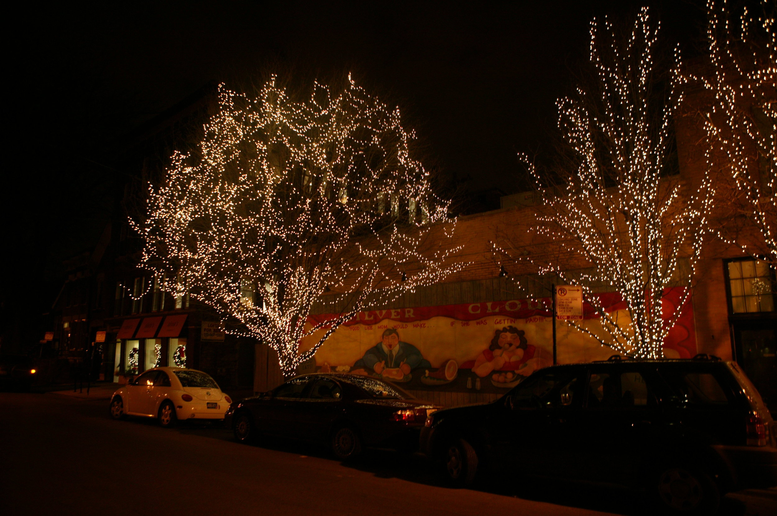Commercial Holiday Lighting for Local Business