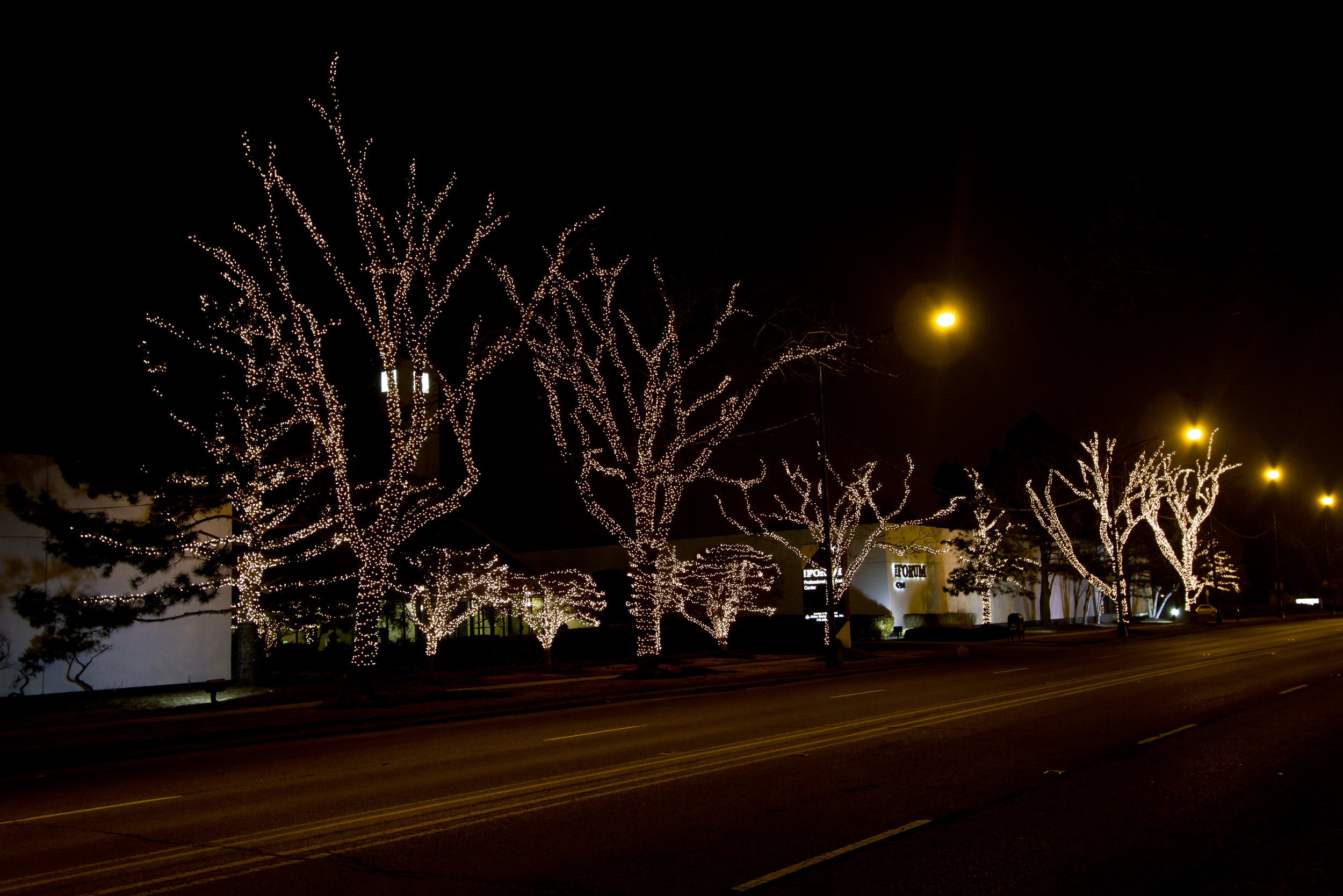Commercial Holiday Light Installation in Chicagoland