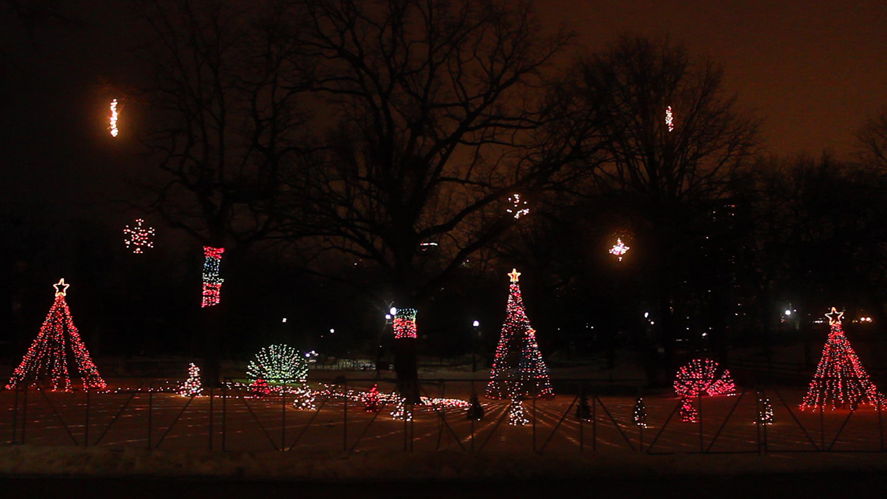 South Lawn Holiday Lights - Our Work