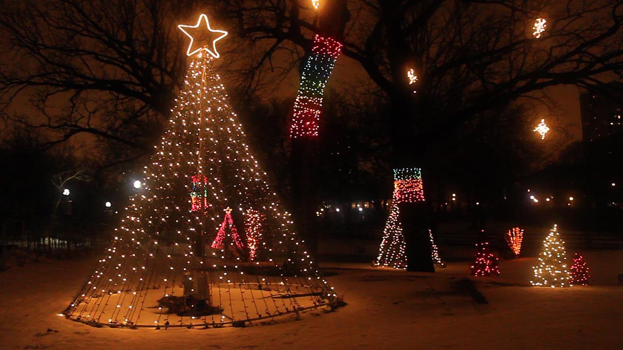 Outdoor Christmas Holiday Lighting