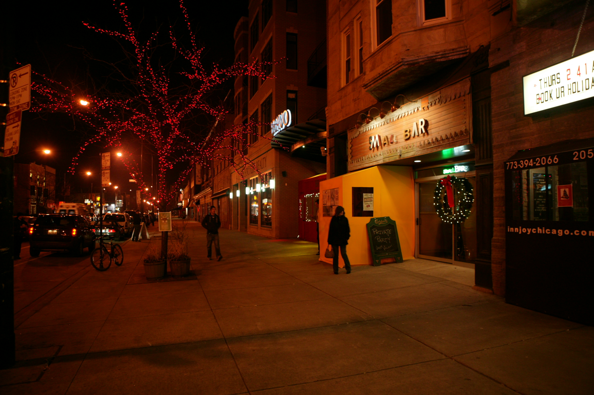 Commercial Holiday Lighting Installation for Local Businesses