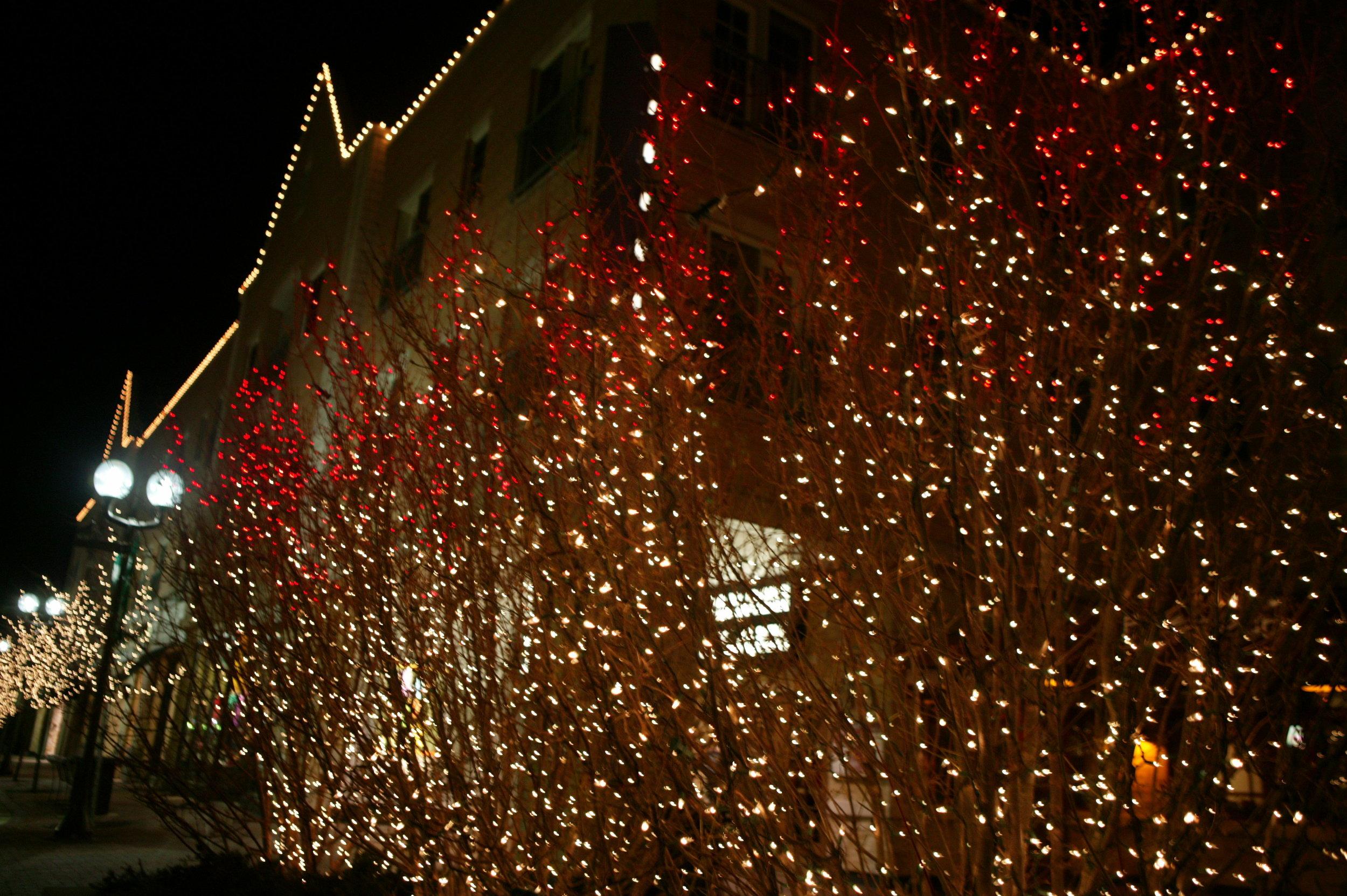 lights.2 030.jpg