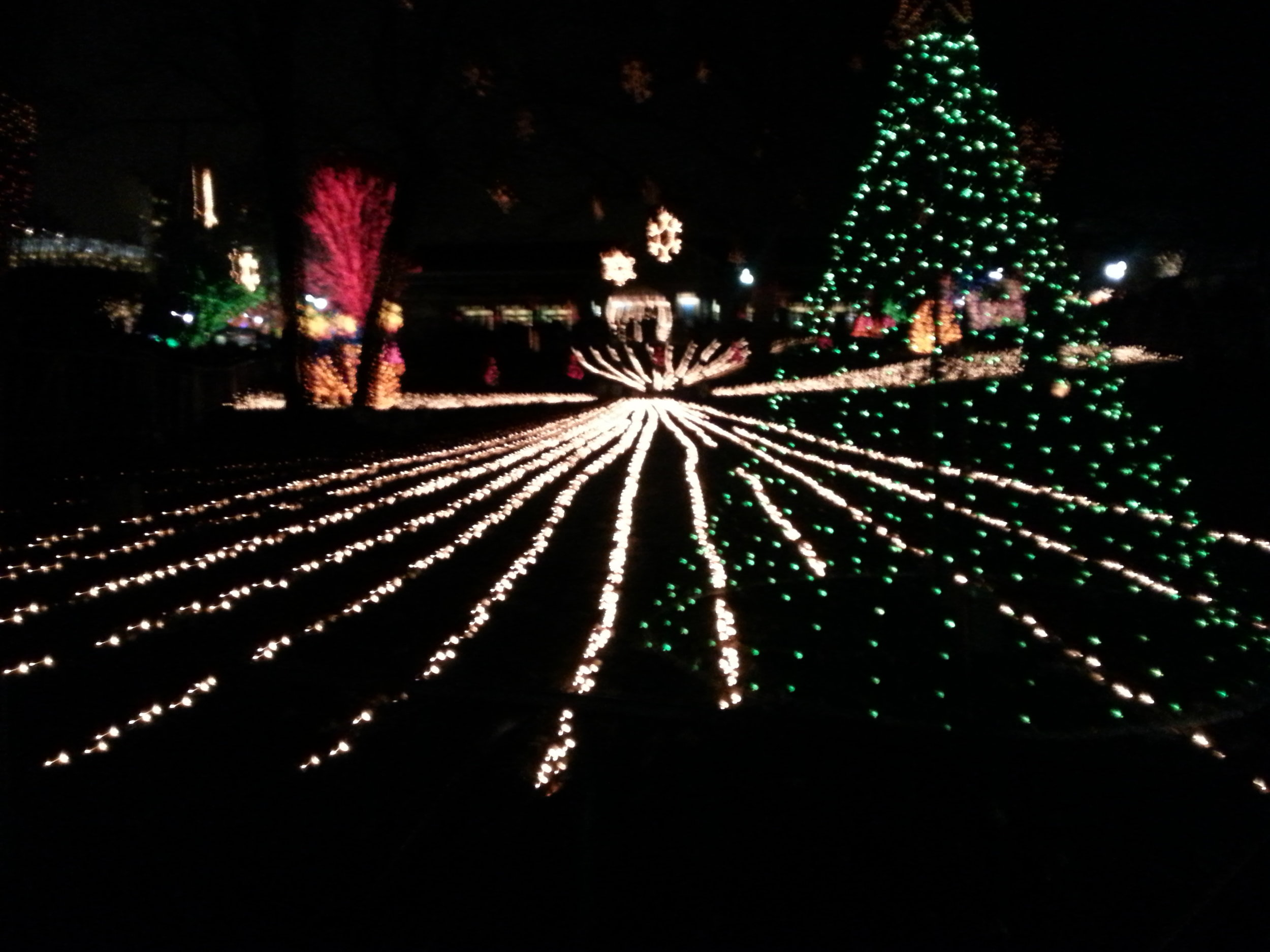 Premium Holiday Lighting Show