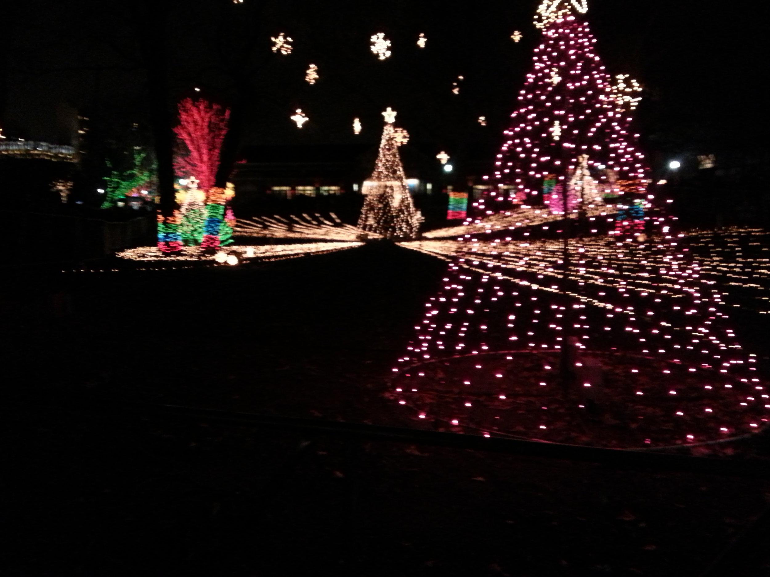Christmas & Holiday Lighting Installation
