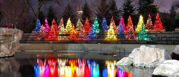 Christmas Lighting Commercial INstallation Company, Illuminight Lighting.