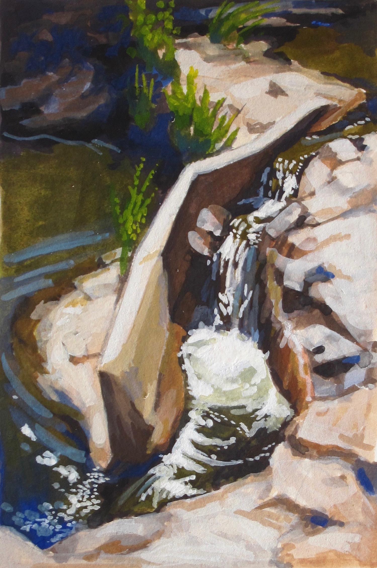 Fish Ladder, Salsipuedes Creek