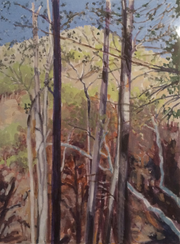 Alder Creek, gouache, Nina Warner