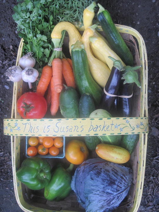 COMMUNITY SUPPORTED AGRICULTURE (CSAs) -