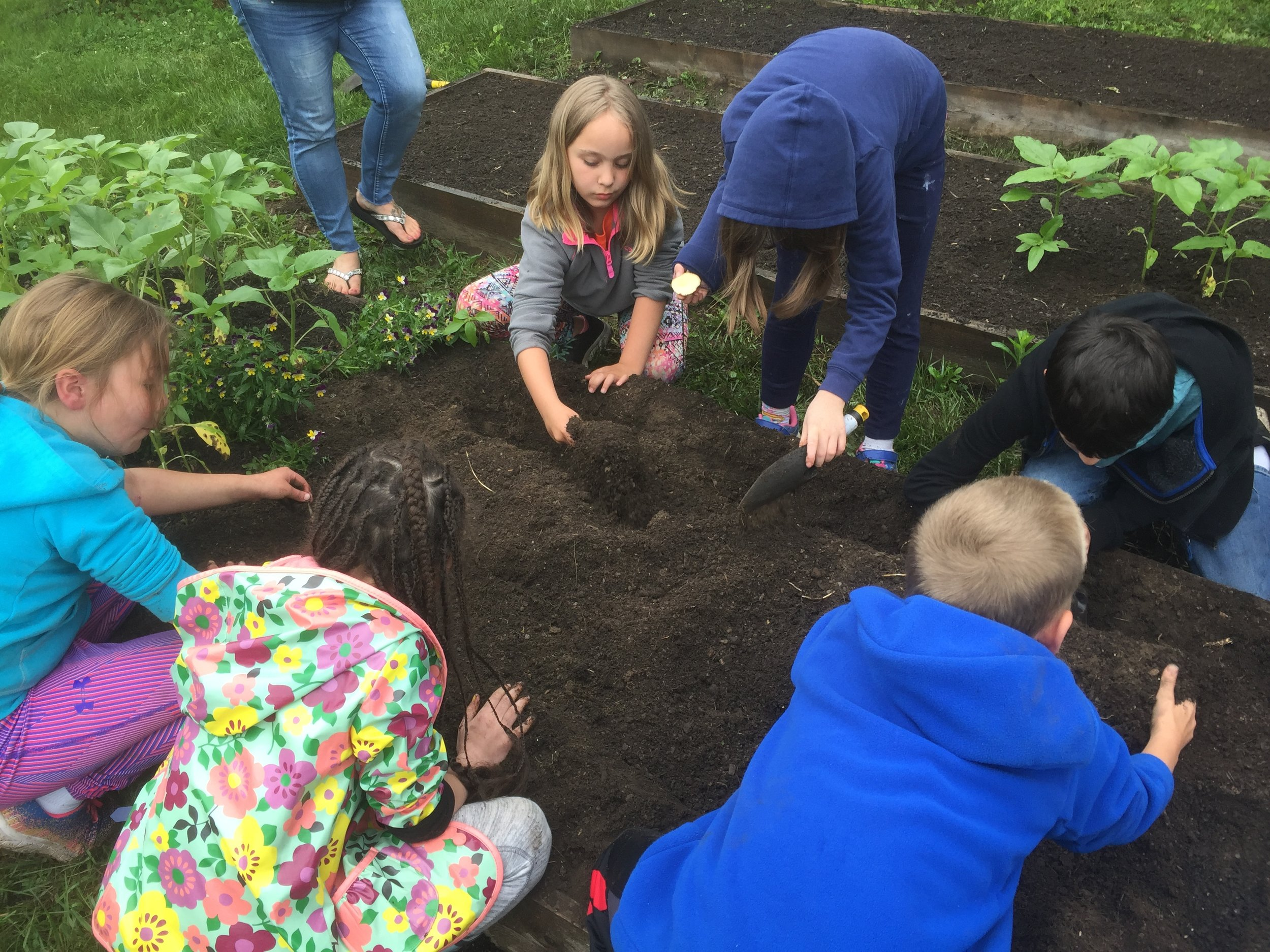 Quarterly Newsletter - - Digging into Work with the Brattleboro Schools- A New Home for Food Connects- Let's Increase Local Food Sales