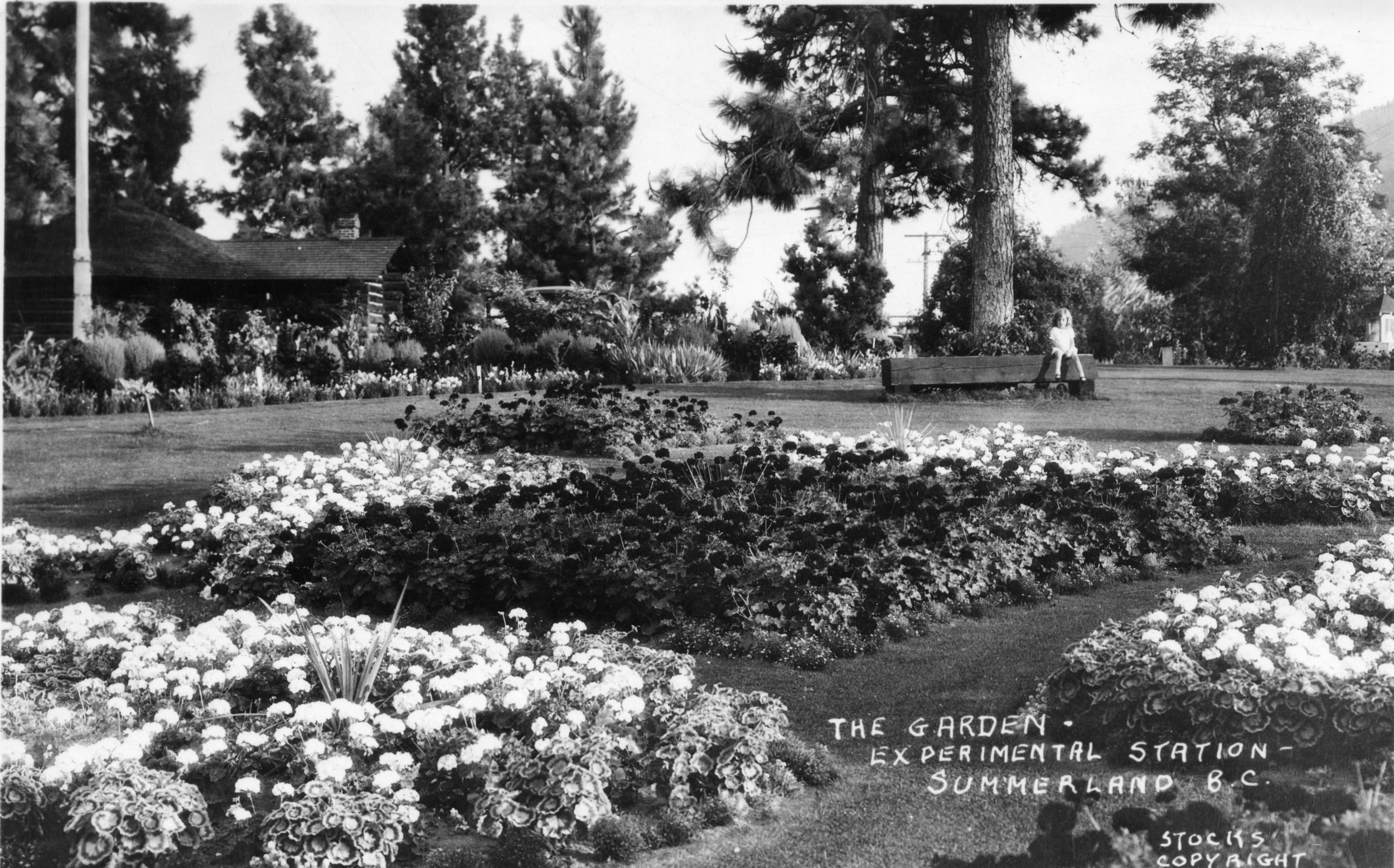 Visiting the Ornamental Gardens? Take this tour before you go. -