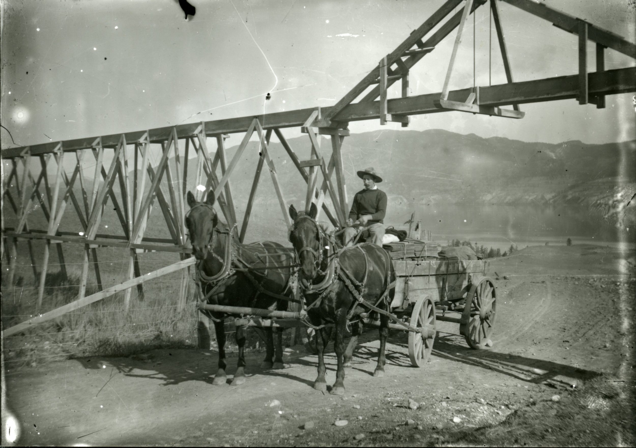 Photo of Jim Dunsdon with a team of horses hauling shingles underneath a flume.