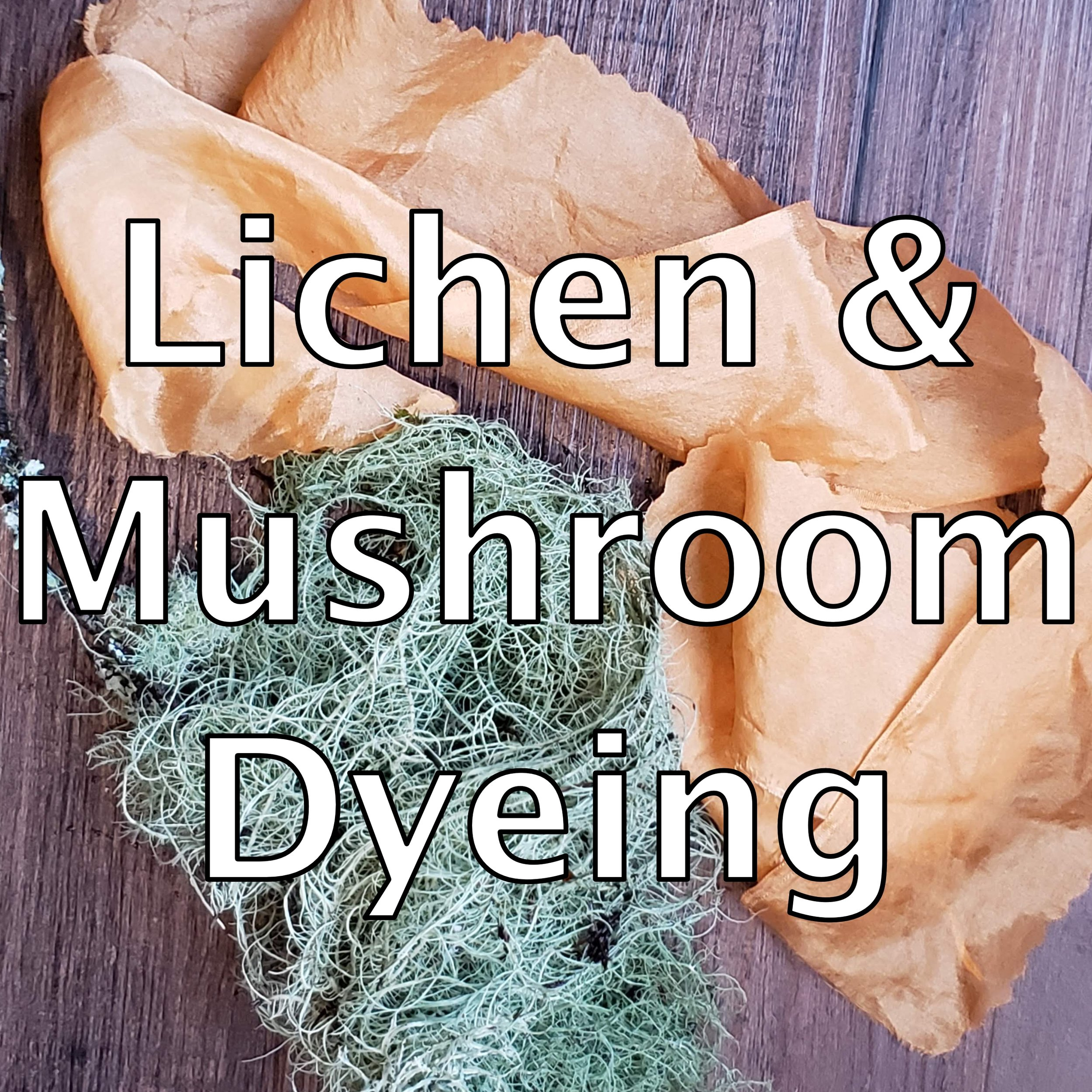 lichen dyeing.jpg