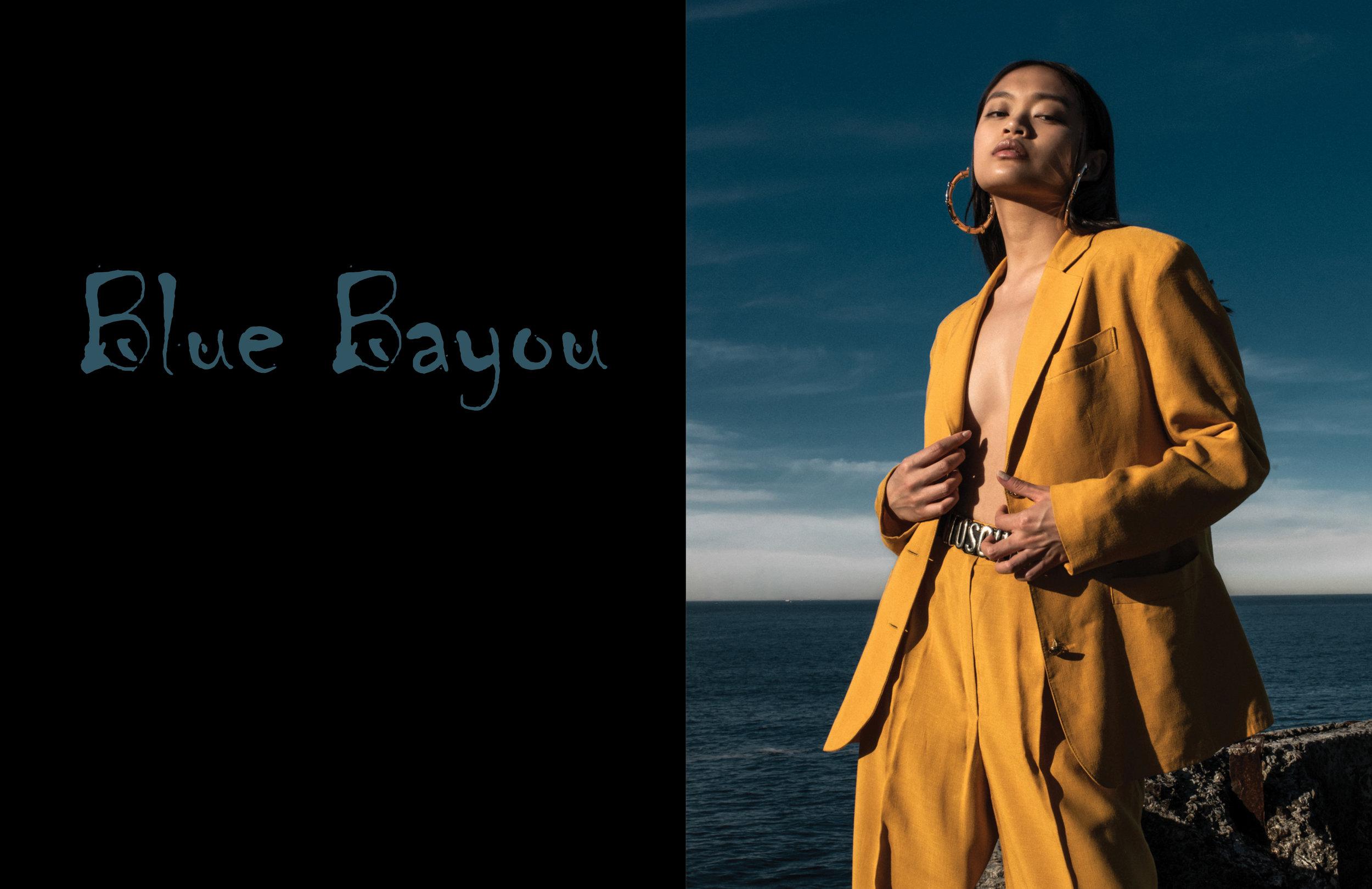 Blue Bayout Layout.jpg