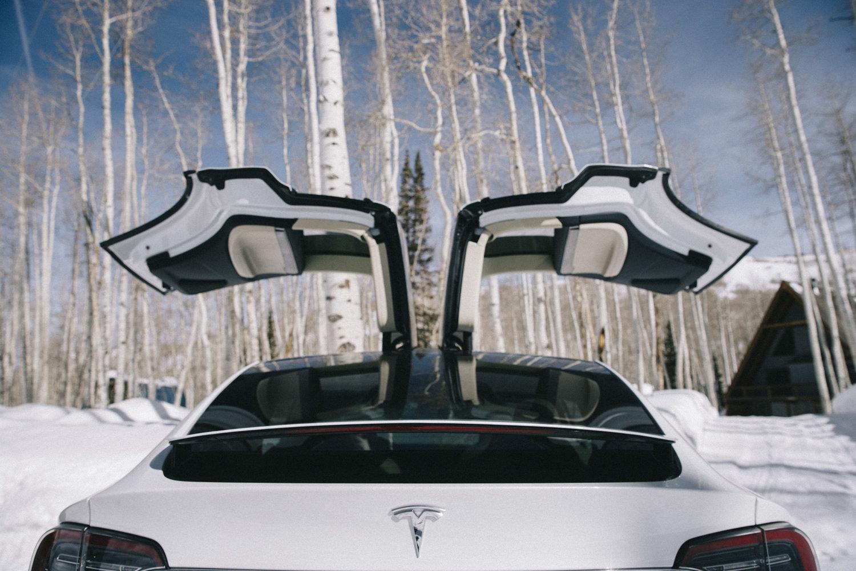 Tesla Model X 9.jpeg