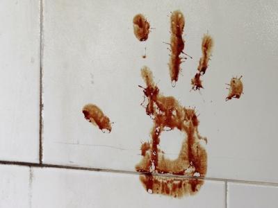 Bloody_Handprint_from_Good-Luck_Sacrifice_-_Shop_Wall_-_Qazvin_-_Northwestern_Iran_(7414179988).jpg