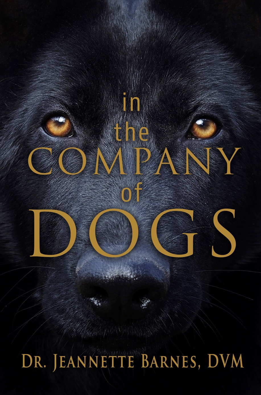 InTheCompanyofDogs_front.jpg
