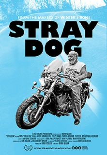 straydog_sm.jpg