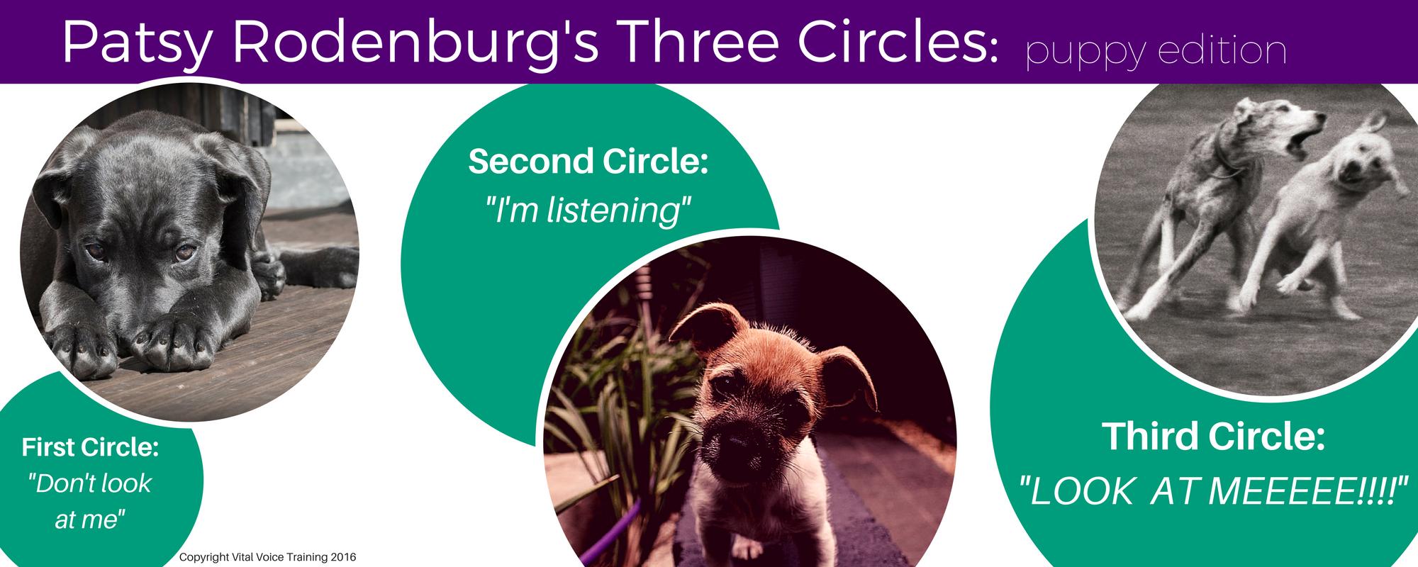 Patsy Rodenburg's Three Circles.png