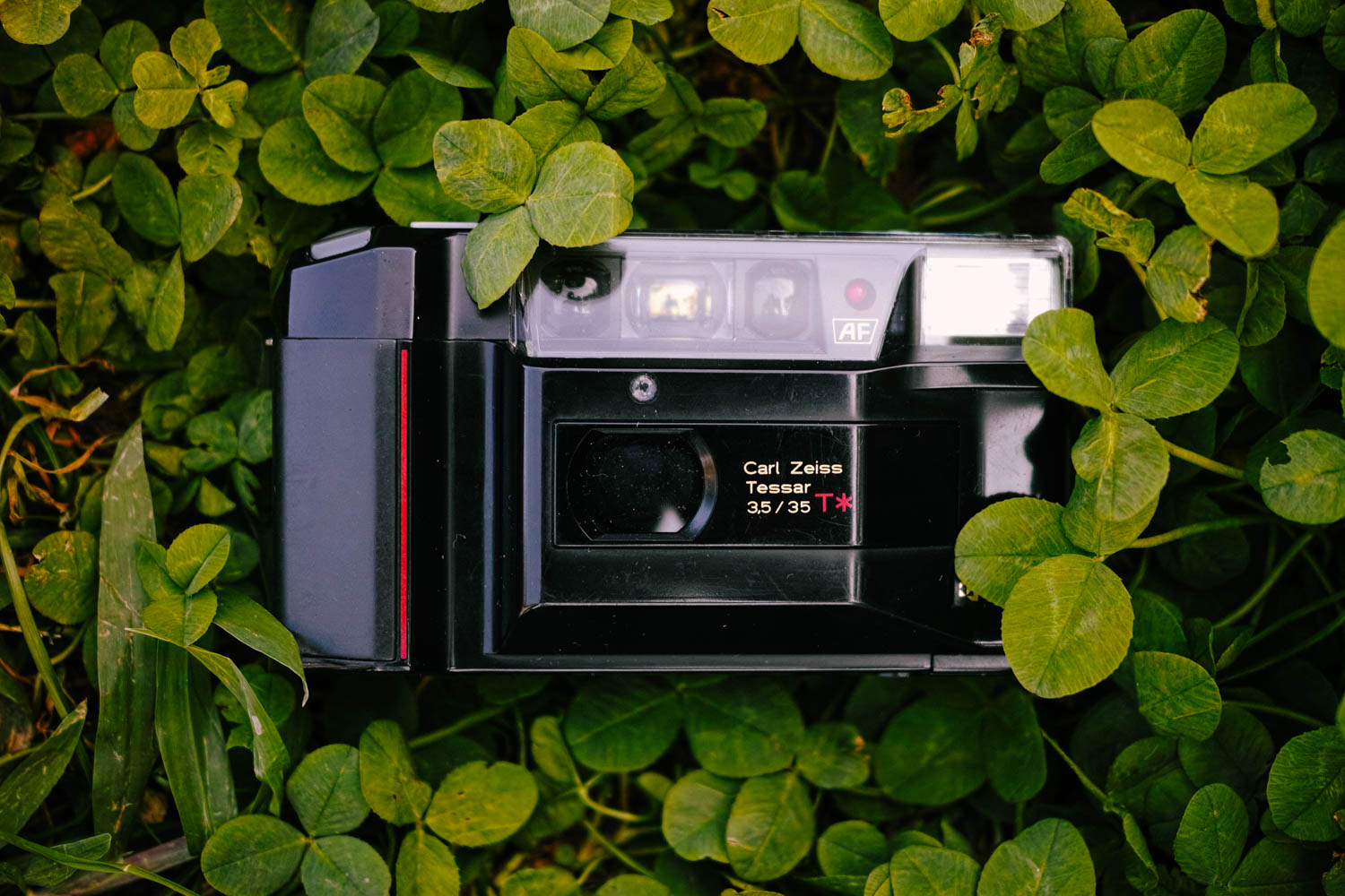 Yashica T2 from the front. Sigma DP2 Merrill.
