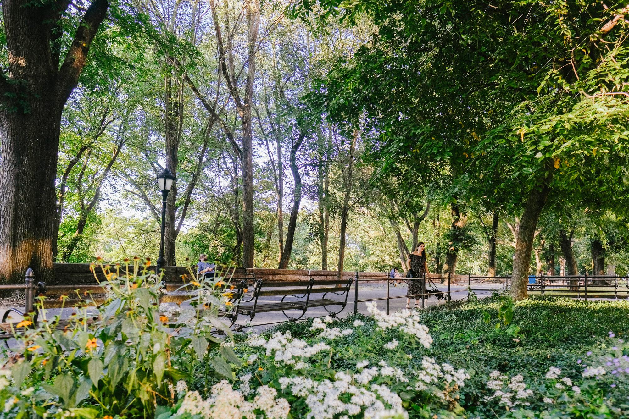 Riverside park on a summer day in Harlem. Fuji X-pro2, Fuji XF 16mm f/1.4 WR.